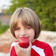 Child eating apple — Stock Photo #32499855