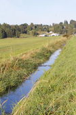 Shallow Rural Ditch — Stock Photo
