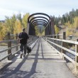Stock Photo: Railway Bridge in British Columbia