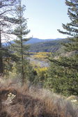 Cascade Mountain Range — Stock Photo