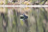 Fishing on a Lake — Stock Photo