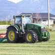 Cutting Grass for Winter Feed - Stock Photo