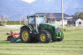 Cutting Grass for Winter Feed — Stock Photo