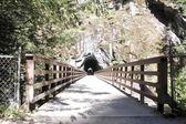 Abandoned Railway Tunnel — Stock Photo