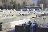Fish Hatchery — Stock Photo