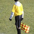Soccer Linesman - Stock Photo