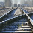 Canadian Rail Yard — Stock Photo