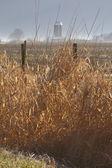 зимняя ферма в вашингтоне — Стоковое фото