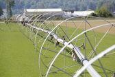 Irrigation Wheels in Washington — Foto de Stock