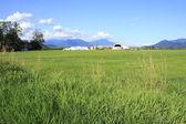 Canadian Valley Farm — Стоковое фото