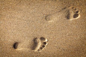 Footsteps in sandy — Stock Photo