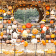 Colours Pumpkins — 图库照片 #32135223