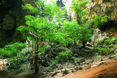 Enchanting tropical mountain cave — Stock Photo