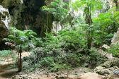 Enchanting tropical mountain cave — Stock Photo