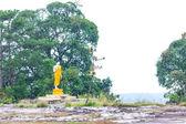 Beautiful Image of Buddha — Zdjęcie stockowe