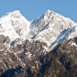 Beautiful peaks of Himalayas in Manali Valley, India — Stock Photo #32197891