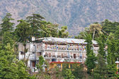 Mcleod Ganj, Dharamsala, Himachal Pradesh, India. — Stock Photo