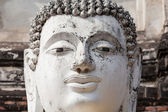 Head of buddha statue — Stock Photo