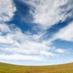 Grass field under blue cloudy sky — Stock Photo #32220765