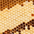 Yellow beautiful honeycomb background — Stock Photo #32221111