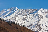 Beautiful peaks of Himalayas in Manali Valley, India — Stock Photo
