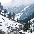 Mountains, Sonamarg, Kashmir, India — Stock Photo #32451131