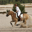 Stock Photo: Horseriding in dunes