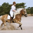 Horseriding in the dunes — Stock Photo