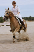 Horseride in the dunes — Stock Photo