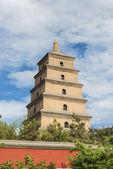 Big Wild Goose Pagoda — Stock Photo