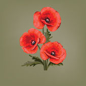 Flower card for invitation. Red poppy. — Stock vektor