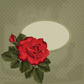 Vintage vector card with rose and frame.Card for invitation with  red rose — Stockvektor