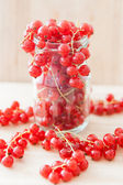 Redcurrant bunches in glass — Stock Photo