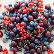 Blueberry, cherry and redcurrant miscellaneous — Stock Photo