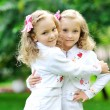 Portrait of two sisters twins in the summer — Stock Photo