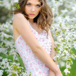 Portrait of a beautiful girl in spring — Stock Photo #25424089