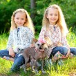 Stock Photo: Portrait of two little girls twins