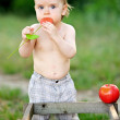 Portrait of little boy outdoors in summer — Stock Photo #39093787