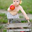 Portrait of little boy outdoors in summer — Stock Photo #39093817