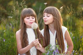Portrait of two young girlfriends with flowers — Stock Photo