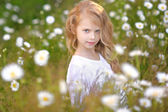 Portrait of a beautiful little girl with chamomile — Foto Stock