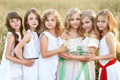Portrait of six little girls in cornfield field — Stock Photo