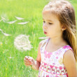 Stock Photo: Beautiful little girl blowing dandelion