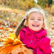 Autumn portrait of cute laughing little girl with maple leaves — Stock Photo #33324045