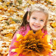 Autumn portrait of cute smiling little girl — Stock Photo #33324995