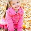 Autumn portrait of cute smiling little girl — Stock Photo #33325007
