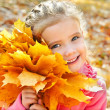Autumn portrait of cute smiling little girl with maple leaves — Stock Photo #33325013