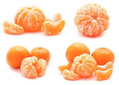 Collection of tangerines mandarines isolated on a white — Foto de Stock