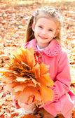 秋天的枫叶的可爱微笑小女孩画像 — 图库照片