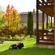 Autumn care in the summer garden in the country. — Stock Photo